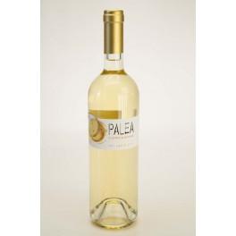Palea, vino bianco IGT   - Cordeschi
