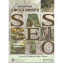 Sasseto - Il Bosco Animato, libro - Ceccarelli Ed