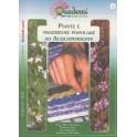 Piante e tradizione popolare ad Acquapendente - libro - Museo del fiore