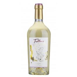 Tellus Oro IGP, bianco Lazio - Falesco