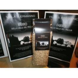 Farro Valle del Paglia  500g - Villa S. Ermanno